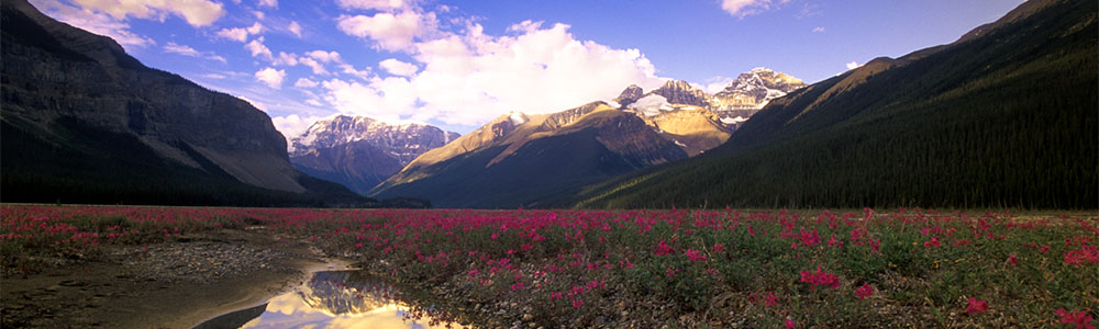 Image of Jasper National Park of Canada