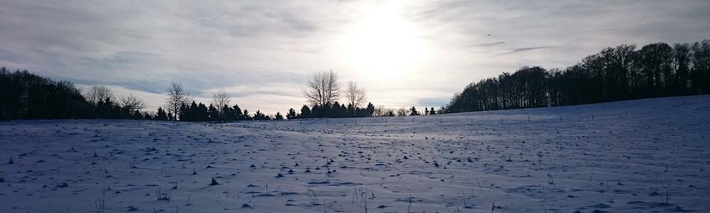 Image of a field in winter