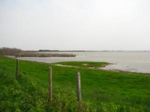 North side (8)