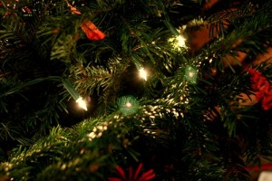 christmas tree lights by swiv
