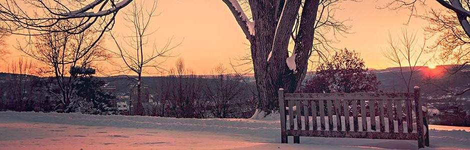 Image of a bench in snow