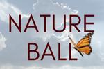 Nature Ball Image