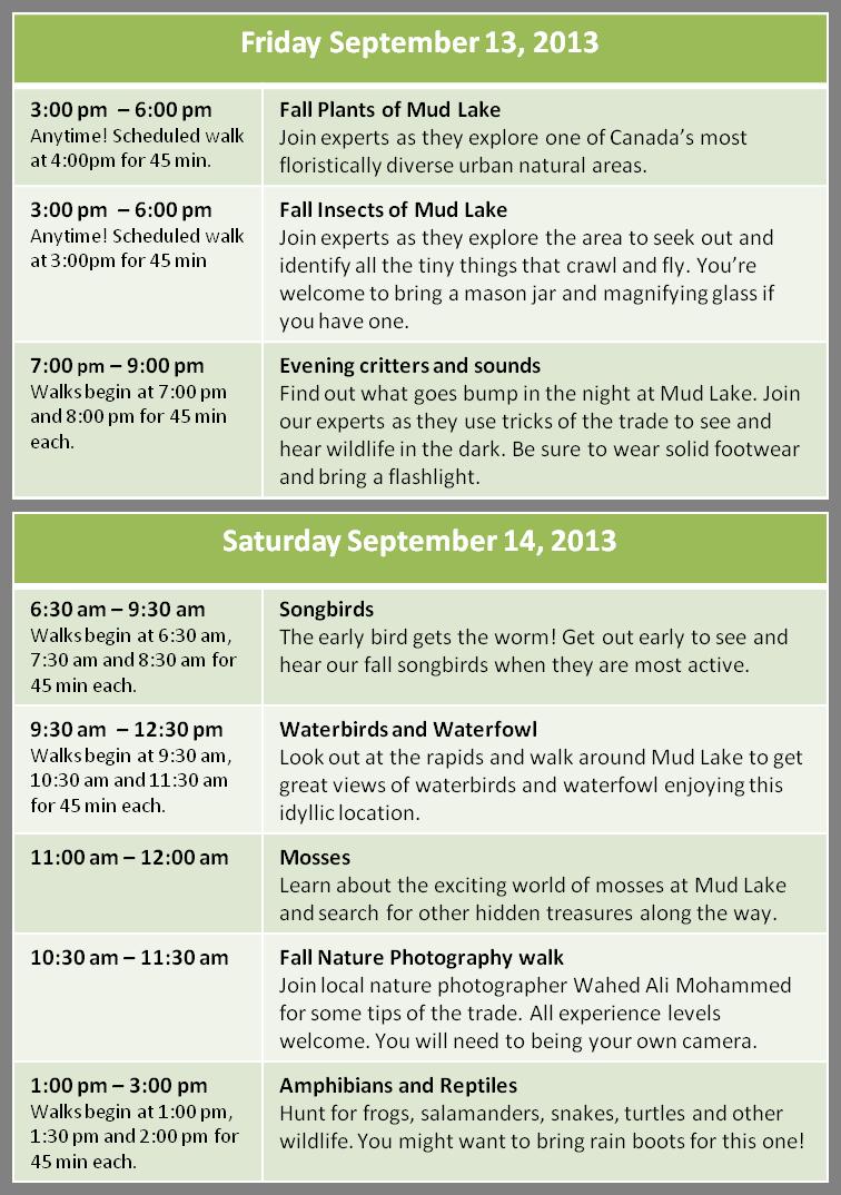 Fri a Sat schedule