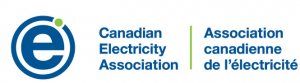 Canadian Electricity Association
