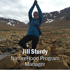 Image of Jill Sturdy click for contact information