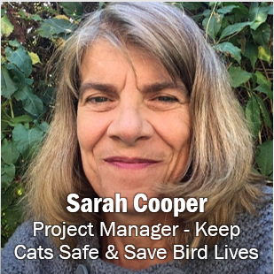 Sarah Cooper, Project Manager