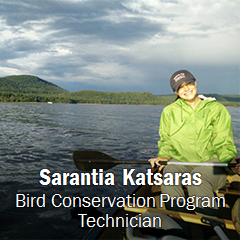 Image of Sarantia Katsaras