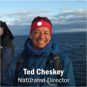 Ted Cheskey, click for contact information