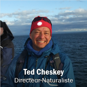 Ted Cheskey, Obtenir les coordonnées