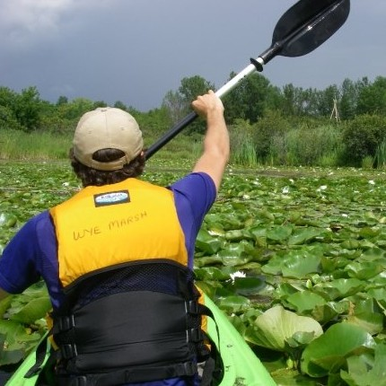 Picture of someone kayaking