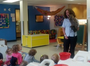 Darwin, Great Horned Owl, Falcon-Ed, Preschool, Ottawa, Glebe, NatureHood, Nature Canada