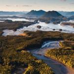 IBA Caretakers: People Protecting Birds Across Canada – Vancouver Island