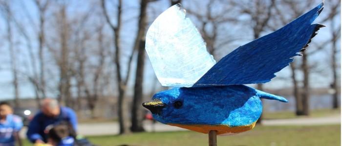 image of bluebird craft