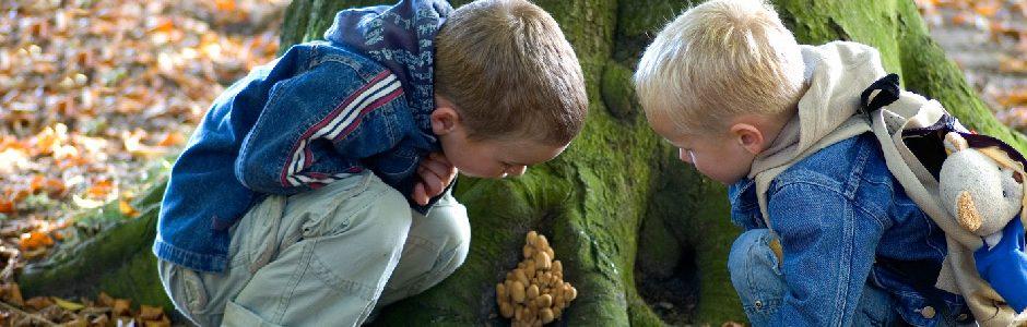 Image of kids around tree