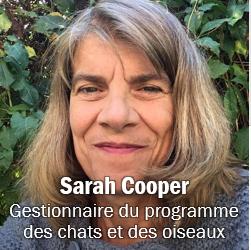 Image of Sarah Cooper