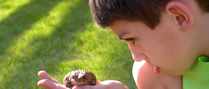Image of a boy with a frog