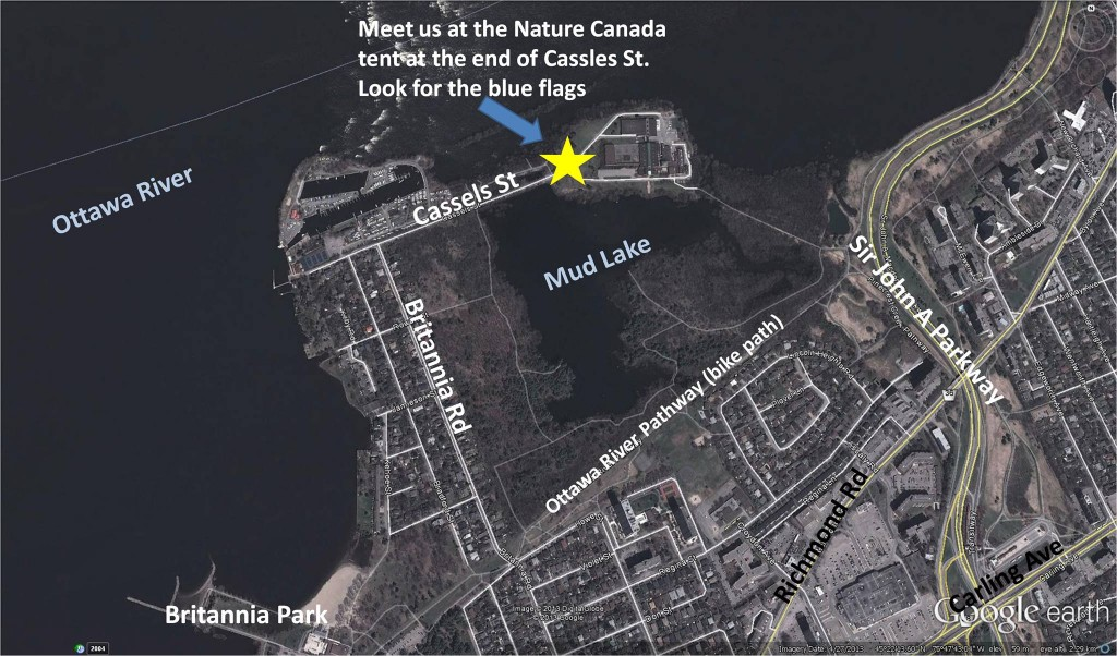 Mud Lake meeting location