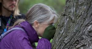 photo of expert examining tree bark