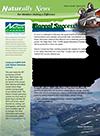 Newsletter Spring 2010 (2)-1