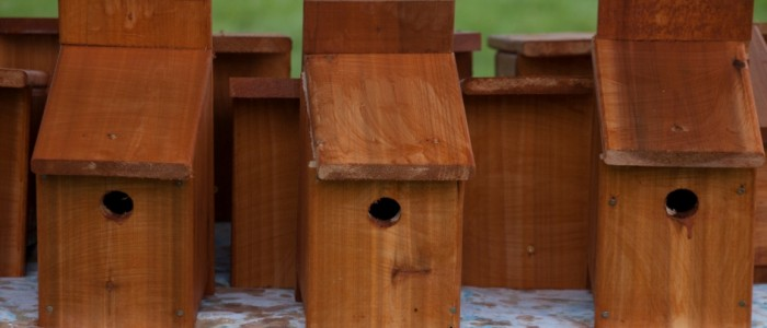 image of bird houses