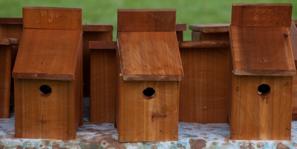 image of bird houses