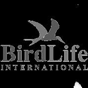 Birdlife small