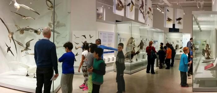 kids at Museum of Nature Nov 2014