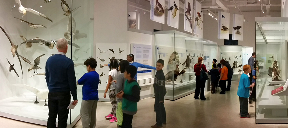kids at Museum of Nature Nov 2014