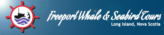 Image of Freeport Whale & Seabird Tours Logo