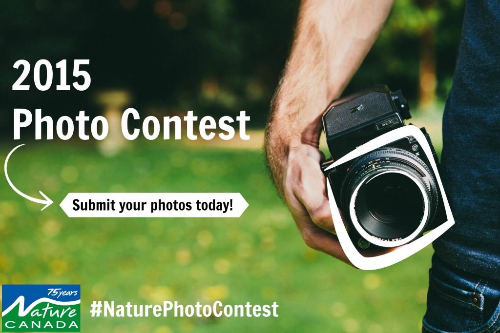 2015 Photo Contest Promo Pic