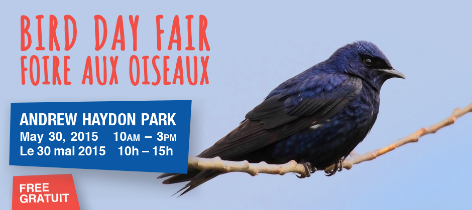 Bird Day Fair webbanner