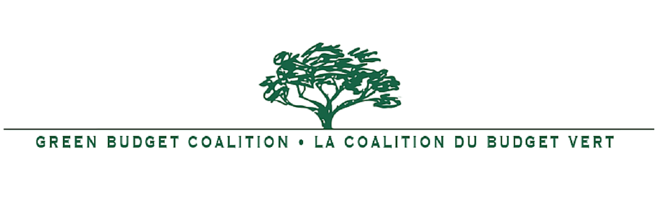 Green Budget Coalition banner