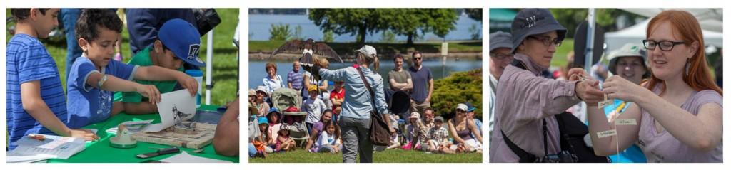 photos from the Bird Day Fair 2014