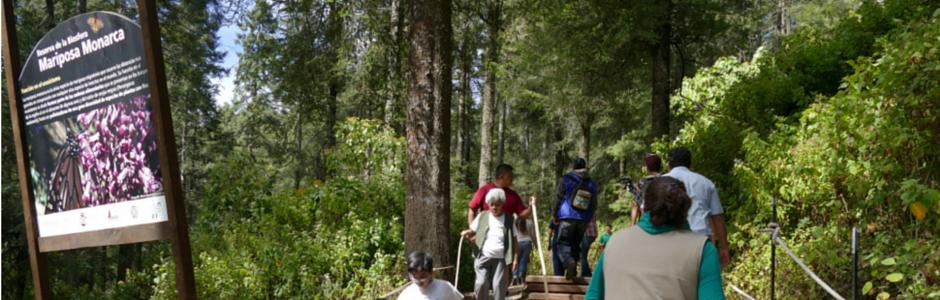 People walking along biosphere path