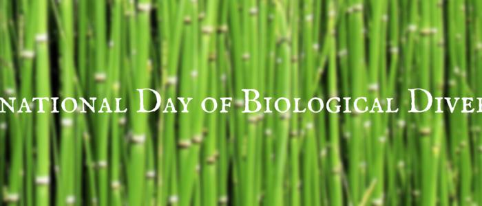 International Day of Biological Diversity