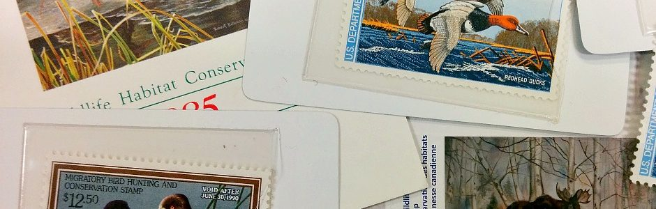 Picture of Nature Stamps