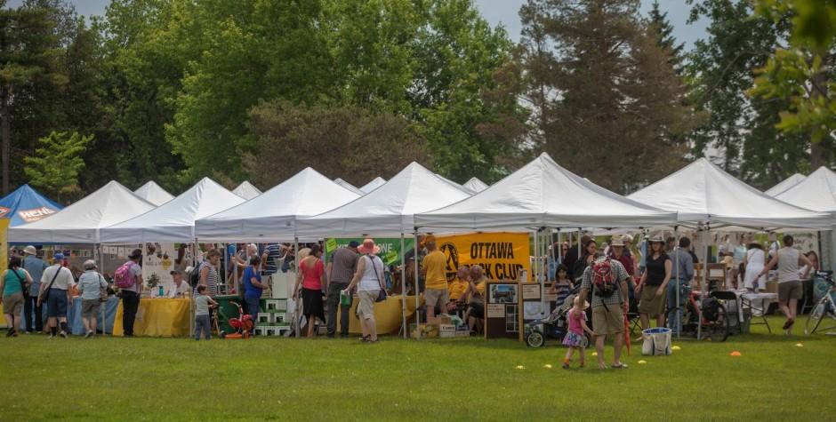 photo of the Bird Day Fair 2015