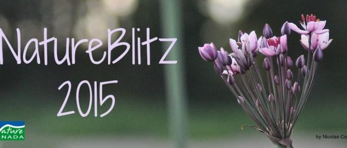 Nature Canada's NatureBlitz 2015 banner