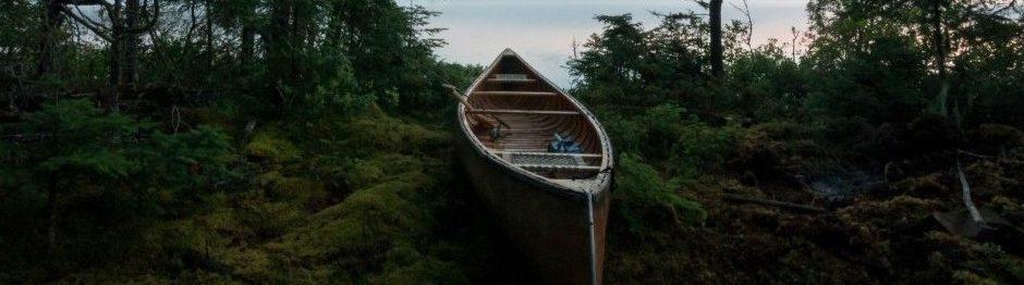 Canoe by Brendan Forward