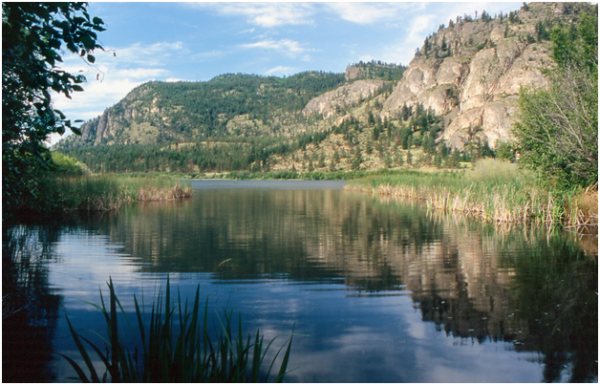 Vaseux-Bighorn National Wildlife Area