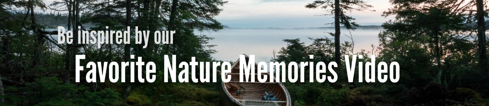 Website-Slider-Favorite-Nature-Memories-Video-1920x419