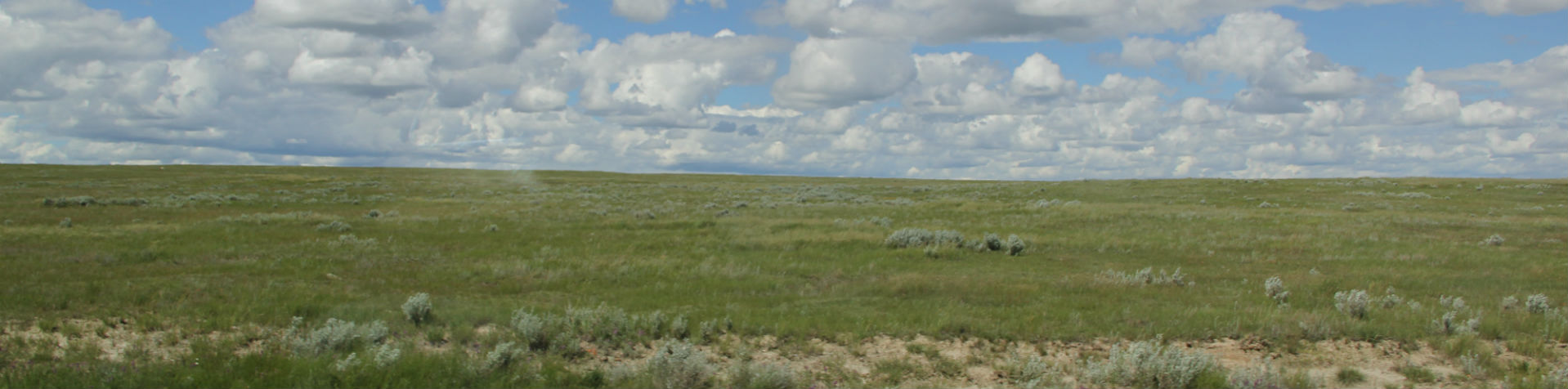 Trudeau Government should Protect Grasslands