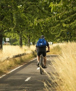 Image of a man biking on a path
