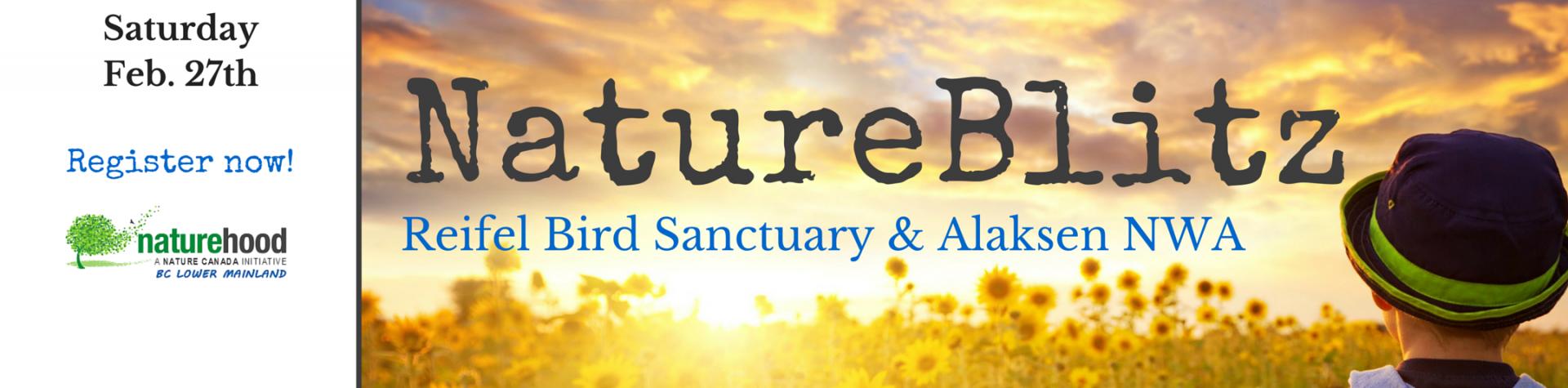 NatureHood Events - Lower Mainland NatureBlitz, February 27 2016