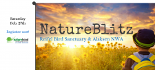 Join the Lower Mainland's First NatureBiltz!