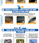 7 ways to help Species at Risk Infographic (English)