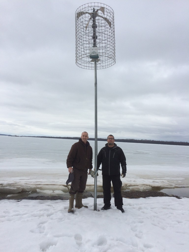 Image of a Purple Martin house with landlords