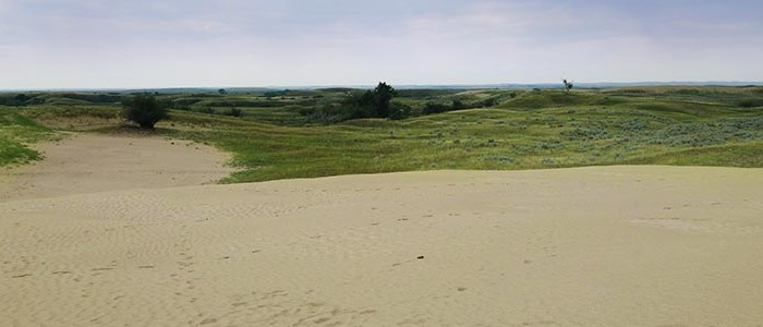 View of the surrounding grasslands at Great Sandhills