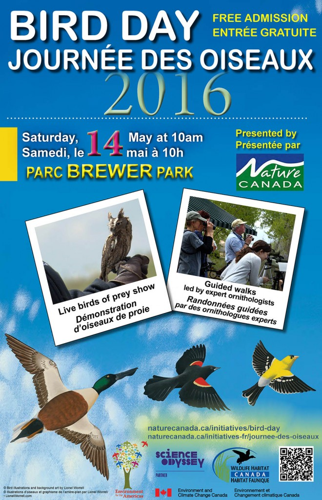 Bird Day Poster