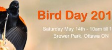 Join us for our 2016 Bird Day!